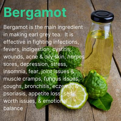 Bergamot (1).png
