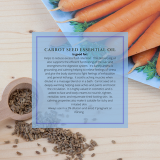 carrot seed essential oil.png