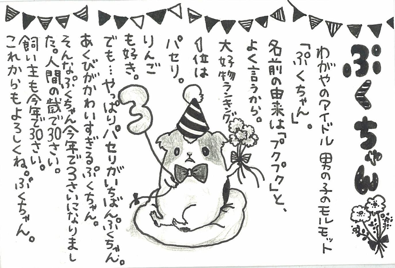 小冊子の原稿.jpg