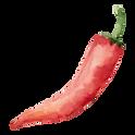 Roter Chili