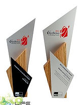 troféu de madeira  , troféu ecológico , medalha , medalha ecologica , medalhas ecologicads , trofeus e medalhas , trofes e medalhas ecologicas , produtos ecologicos .
