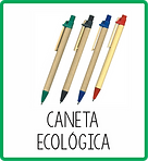 ESCRITÓRIO ECO