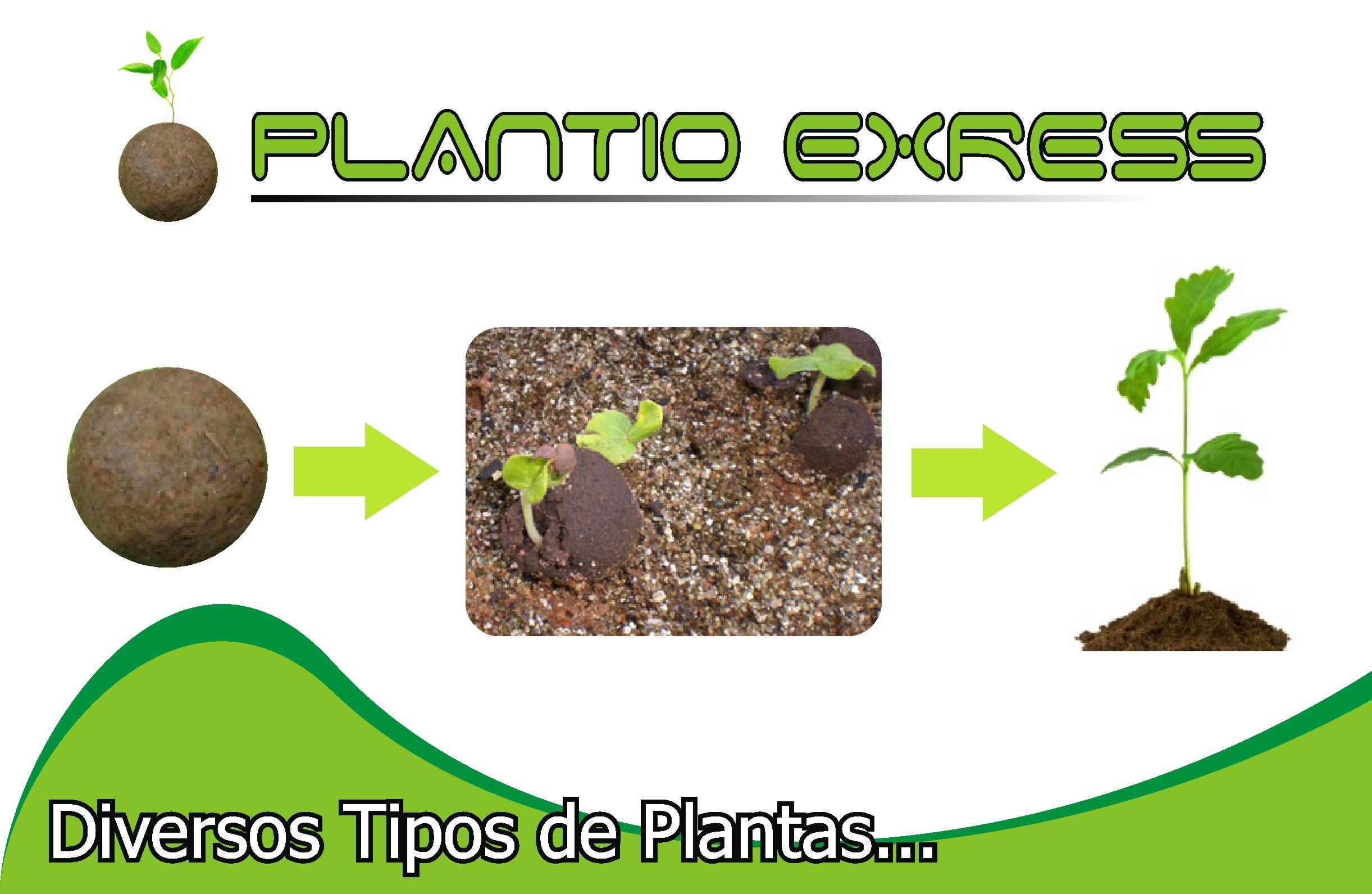 PLANTIO EXPRESS