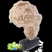 Trophée-AFRICA-ECO-RACE-BOIS-ref-9053-10