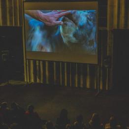 Audience-w-screen-Estonia-1030x786.jpg