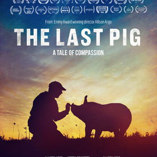 THE LAST PIG POSTER