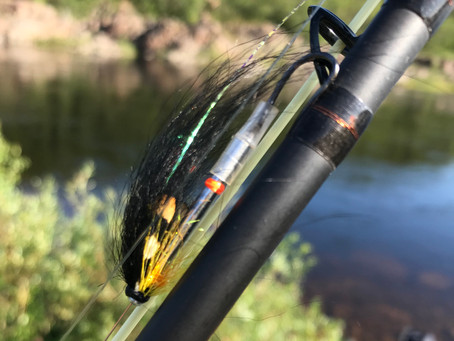 A Handful of Flies from the Kola Peninsula: Part One