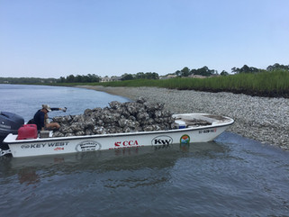 Oyster Reef Build at the Cross Island Boat Ramp
