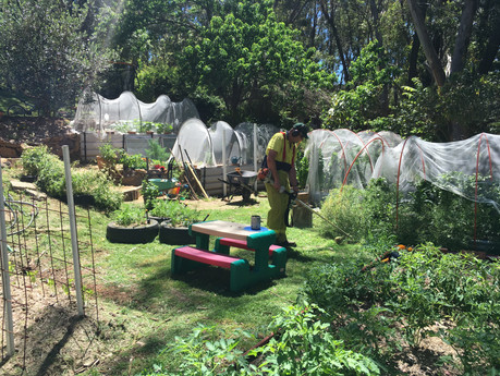 Our Home: Organic Vegetable Garden Construction