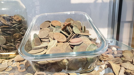 Fig 12 - Toasted Coins.jpg