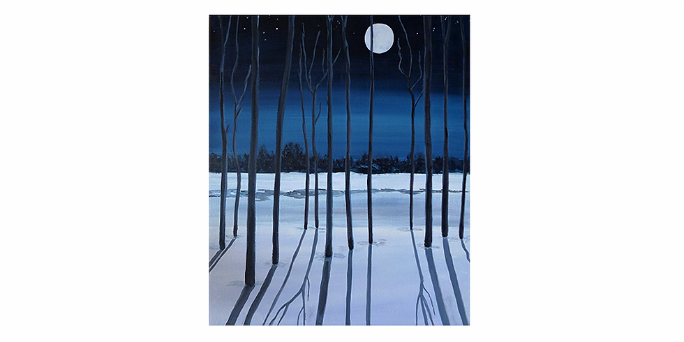 Moon shadow and snow