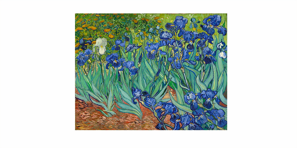 NEW! Extended classes - Vincent Van Gogh