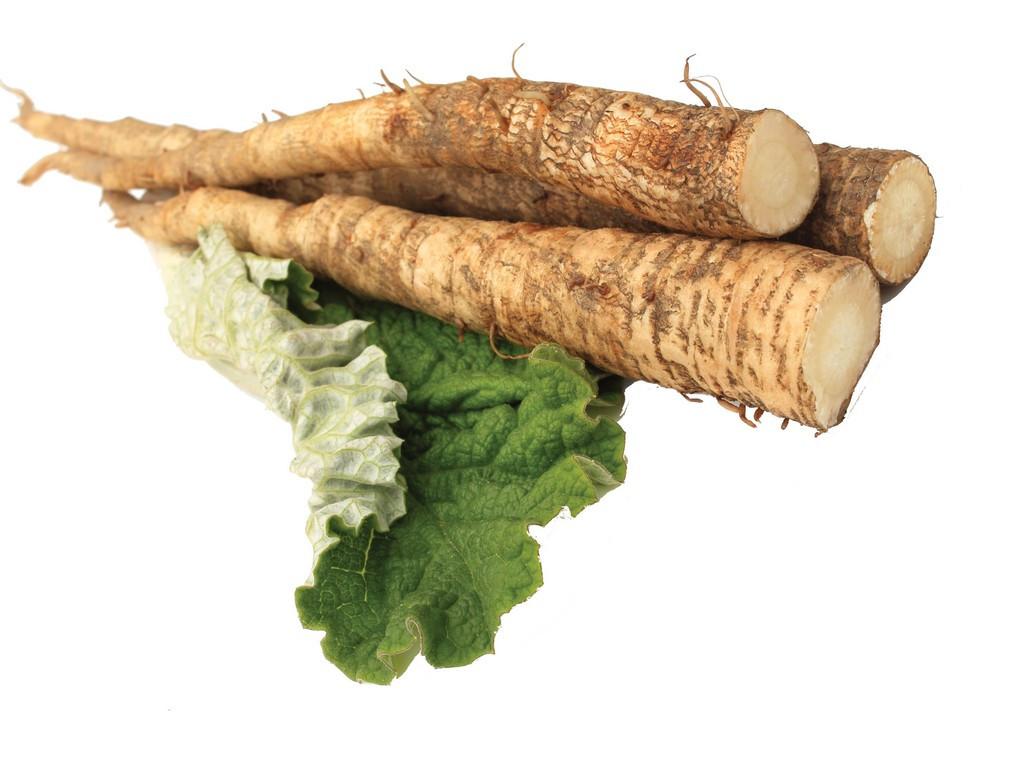 Burdock Root Enzymes