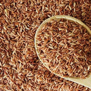 Brown Rice Enzymes