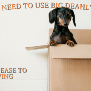 Why Big Deahl's Movers Is Your One-Stop Shop For Moving