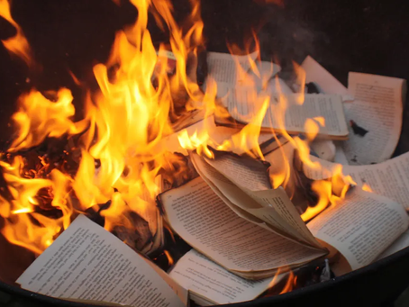 Hey everybody! Come to my digital book burning!