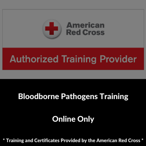 Bloodborne Pathogens Training Online