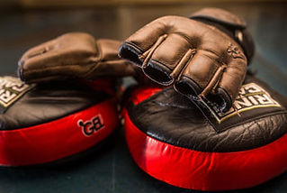 bag gloves and focus mitts, martial arts