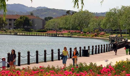Foster city image 2.JPG
