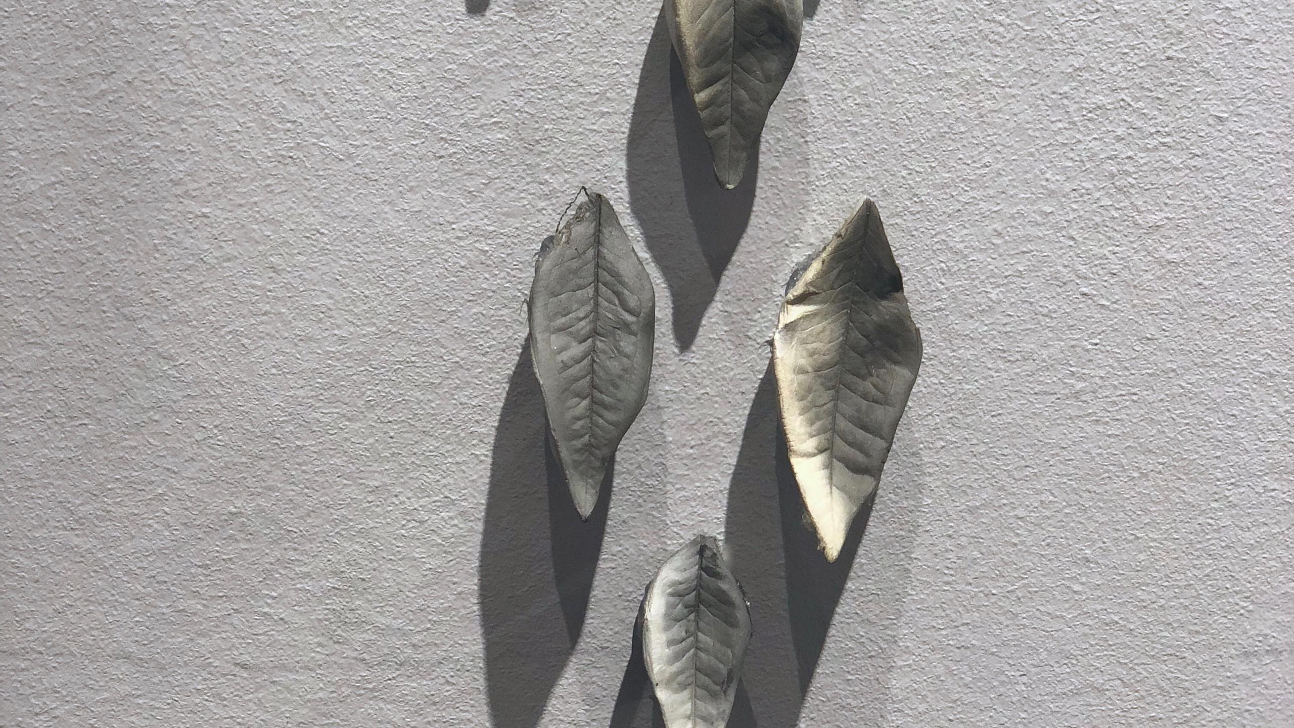Dhaka Art Summit