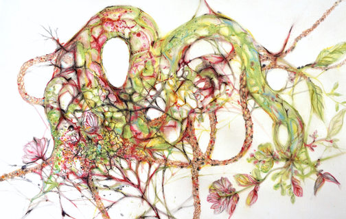 Drawings: Nature Intimated
