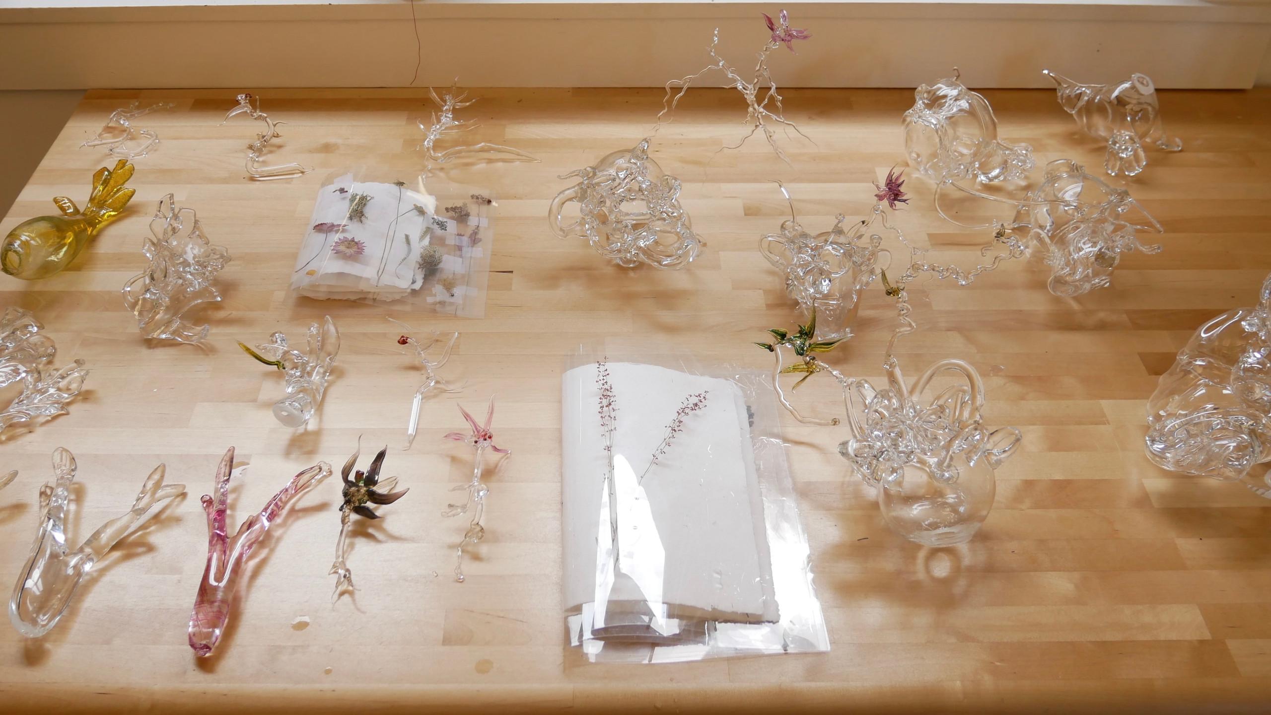 Glass Specimens