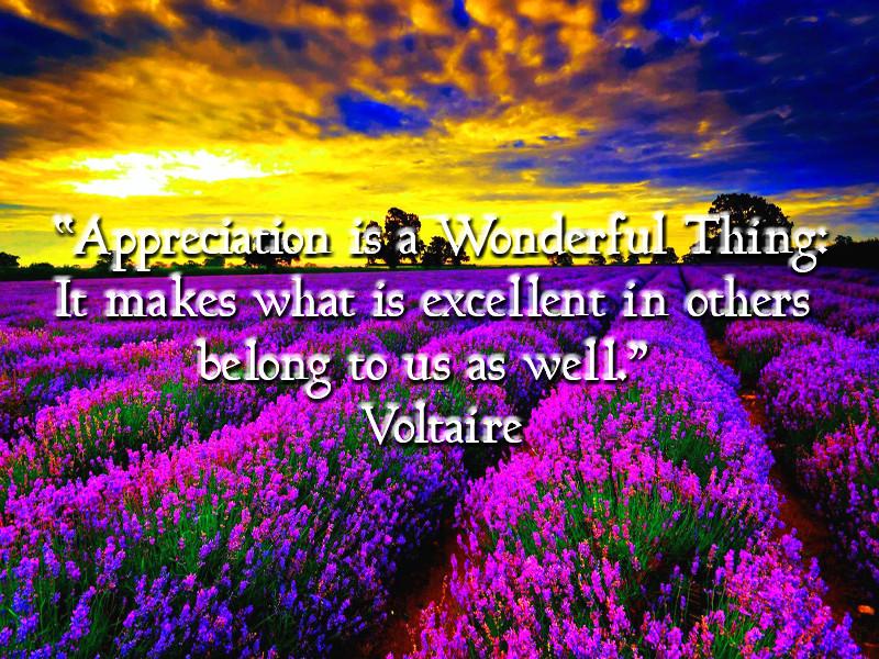 appreciation quote.jpg