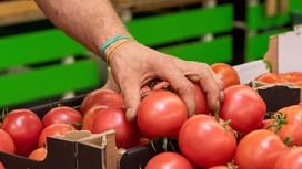 Prawie 90% Polaków nie nosi rękawiczek ochronnych podczas zakupów spożywczych