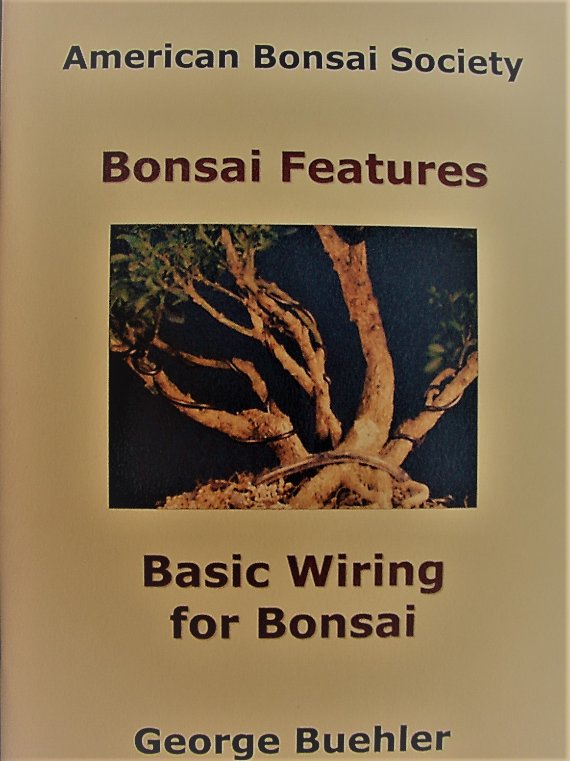 Triangle Bonsai Tbs Library Wiring For Beginners Buehler George Basic 38 Pages Beginner Information