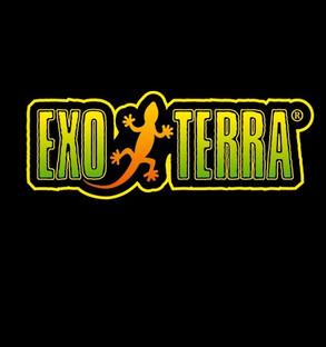 EXX.jpg