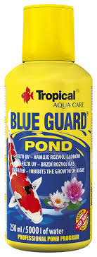 BLUE GUARD POND TREATMENT 250ML(STOPS ALAGE-GREEN WATER )
