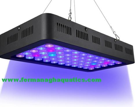LED REEF LIGHTING