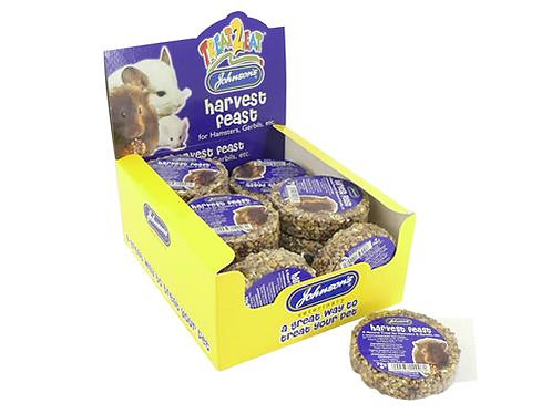 JV HAMSTER NUTTY HONEY TREATS x1