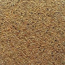 budgie seed. 1kg bag