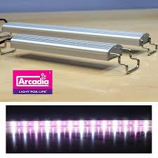 120CM ARCADIA CLASSICA LED  FRESHWATER