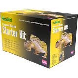 leopard gecko Starter Kit with gecko