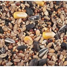 wild bird seed mix 1kg bag