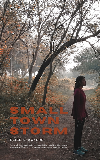 Small Town Storm Book Cover (1).png