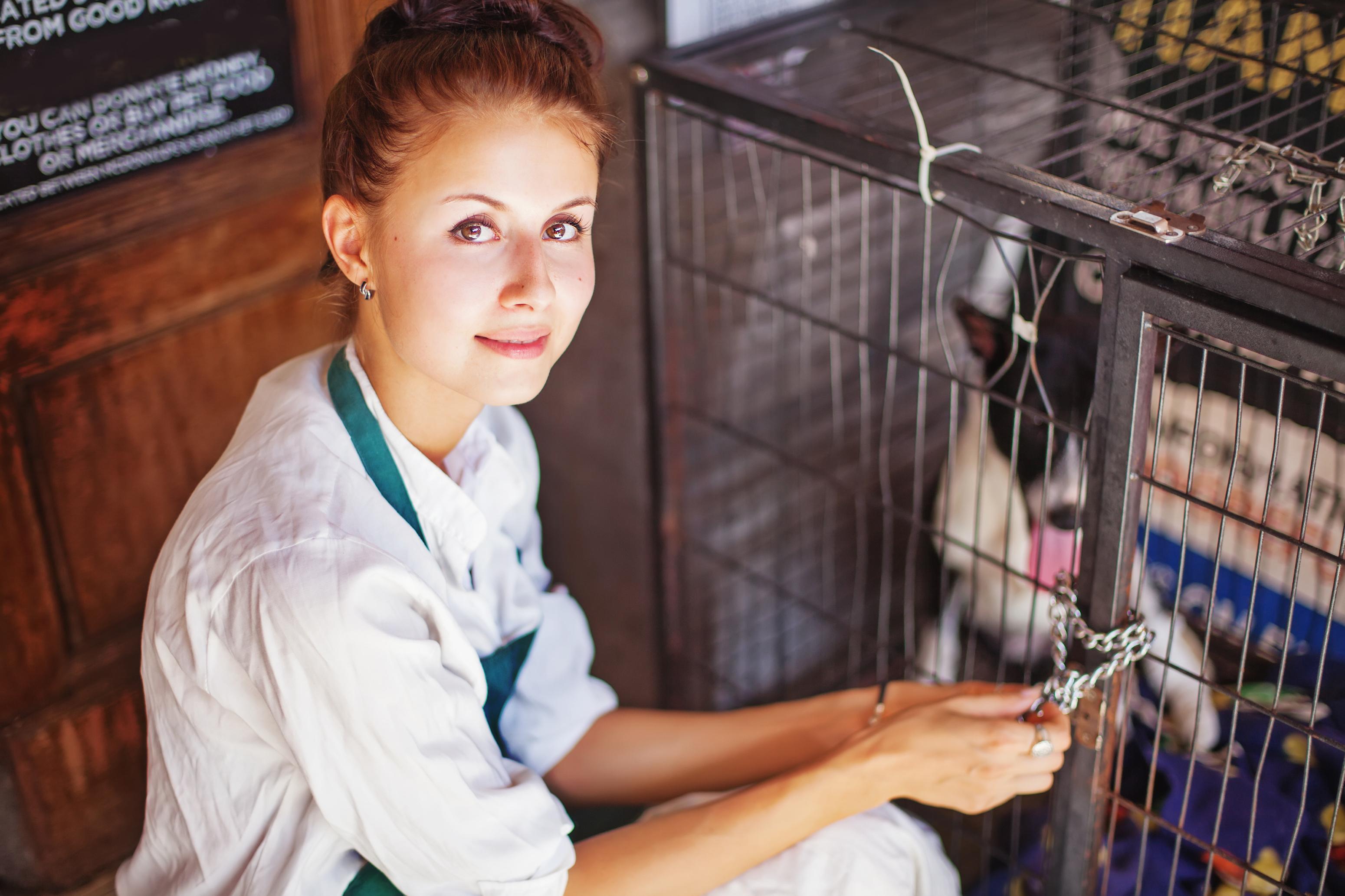 Animal Foster Care