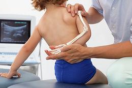 Aprendendo ortopedia - Online