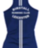 BRC Blue Vest back.png