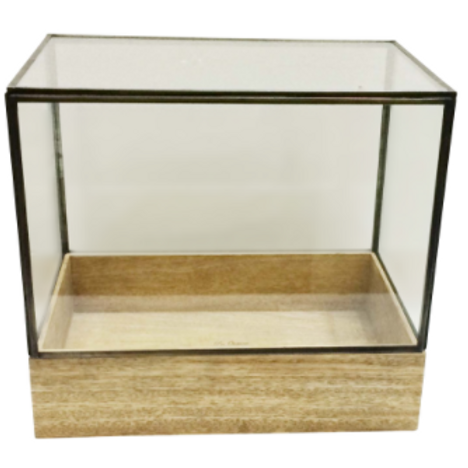 Modern Industrial Glass & Iron Terrarium With Natural Wood Base