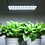 Thumbnail: 22w Ultra-thin Panel LED Grow Light for Indoor Growing
