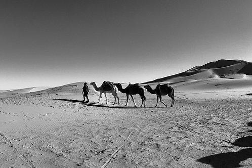 "8""x 10"" Pearl Photographic Print - Erg Chebbi, Sahara Desert, Morocco."