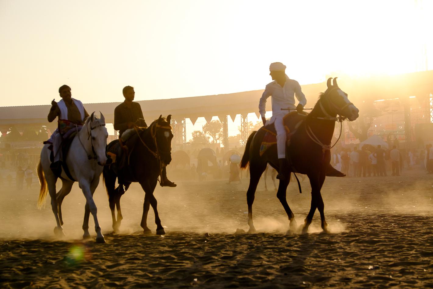 Rajasthan-10
