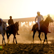 Rajasthan-10.jpg