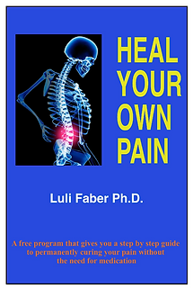 Heal Your Own Pain ebook