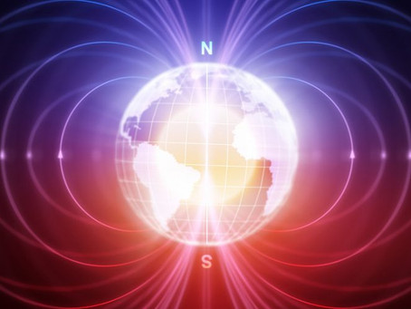 Earth's Magnetic Fields Carry Biologically Relevant Information That 'Connects All Living Systems'