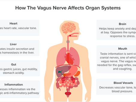 Can the vagus nerve be mediating the effect of emotions on our physical health?