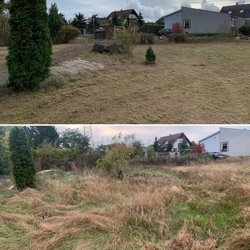 Vyčištění pozemku od přerostlého trávníku - FREZUJEMEPAREZY.cz